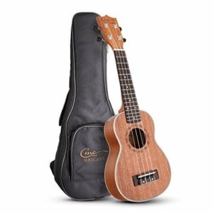 Ukelele Hricane UK-21